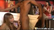 Danas pleasure parties Big black cock pleasuring party people