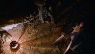 Carice van houten free nude pics - Carice van houten - game of thrones