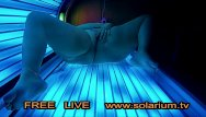 Free xxx tv stream - Bbw fat gilr in real public tanning salon masturbation on tanning bed